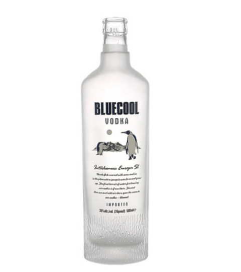 FROSTED VODKA GLASS BOTTLE WITH PRINTING MANUFACTURER